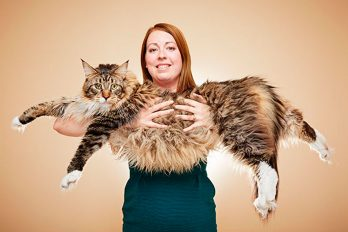 Los 10 Guinness Records más asombrosos del mundo animal