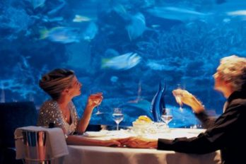 Restaurante submarino, perfecto para que disfrutes de un verdadero paraíso