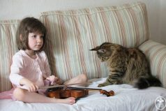Mira la asombrosa relación de una niña autista de seis años y su gato ¡Conoce el valor de la amistad !