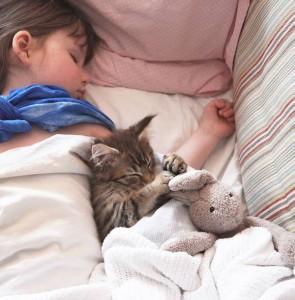 Niña autista muestra cambios gracias a su gato