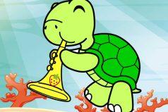 FELICIDADES, se acerca el Día Mundial de las tortugas ¡6 datos que seguro no conocías!