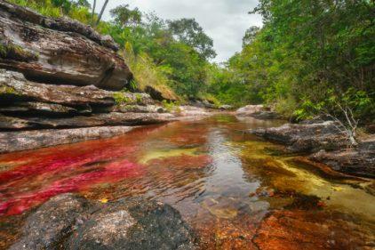 Patrimonio ambiental del país sigue a salvo, se preservará La Macarena y Caño Cristales