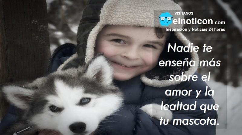 Nadie te enseña más sobre el amor y la lealtad que tu mascota.
