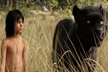 """¿Creciste viendo """"El libro de la selva""""? ¡No te puedes perder su nueva versión!"""