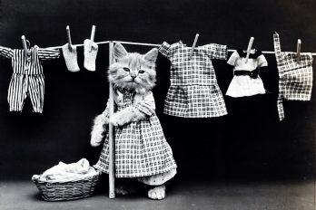 10 Cosas que el vinagre hará en favor de tu ropa ¡No podrás creerlo!