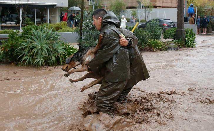 Rescate de un perro en una inundación