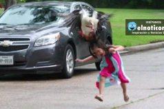La historia detrás del 'brutal' ataque de un ganso a una niña pequeña que se volvió viral