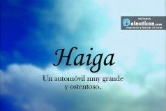 Definición de Haiga
