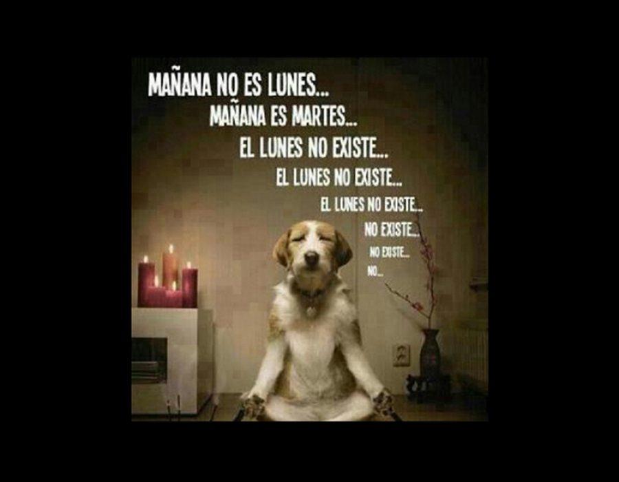 """Mañana no es Lunes…"