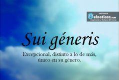 Definición de Sui géneris