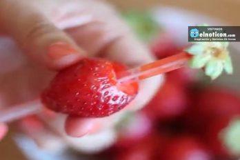 Cómo preparar las fresas muy facilmente