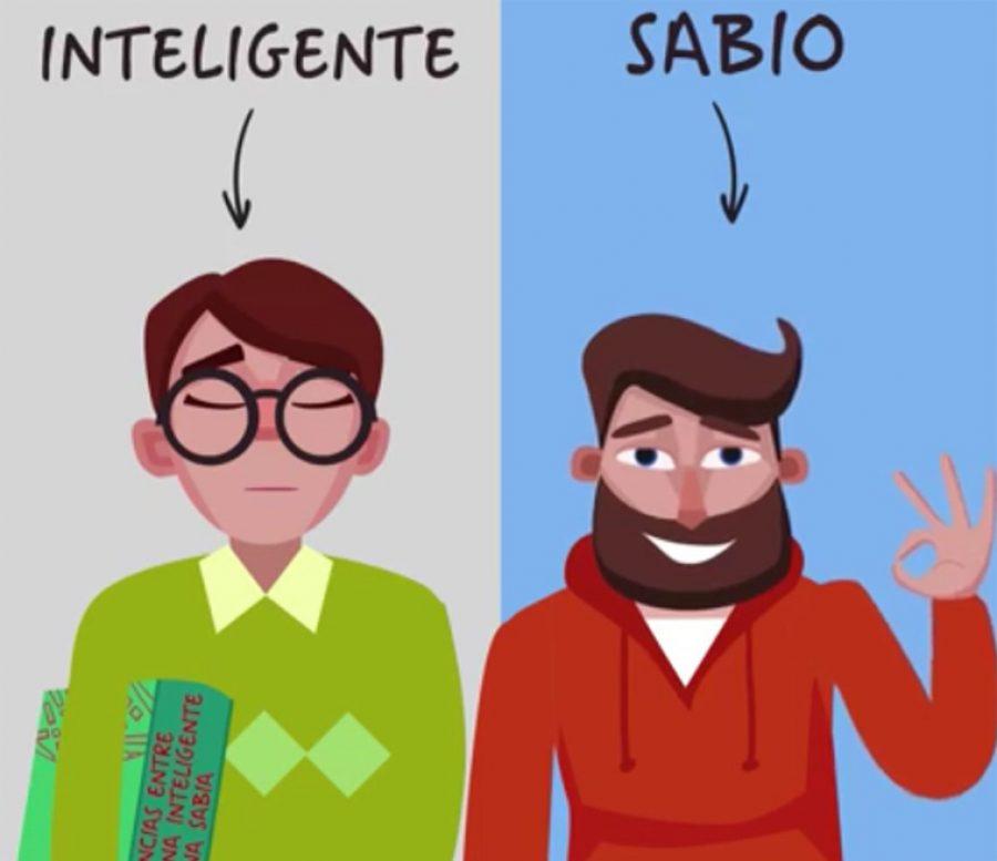Diferencias entre una persona inteligente y una sabia elnoti diferencias entre una persona inteligente y una sabia altavistaventures Choice Image