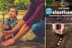 En Argentina celebrarán cada nueva vida plantando un árbol