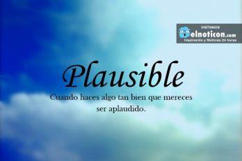 Definición de Plausible
