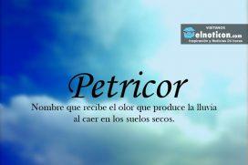 Definición de Petricor