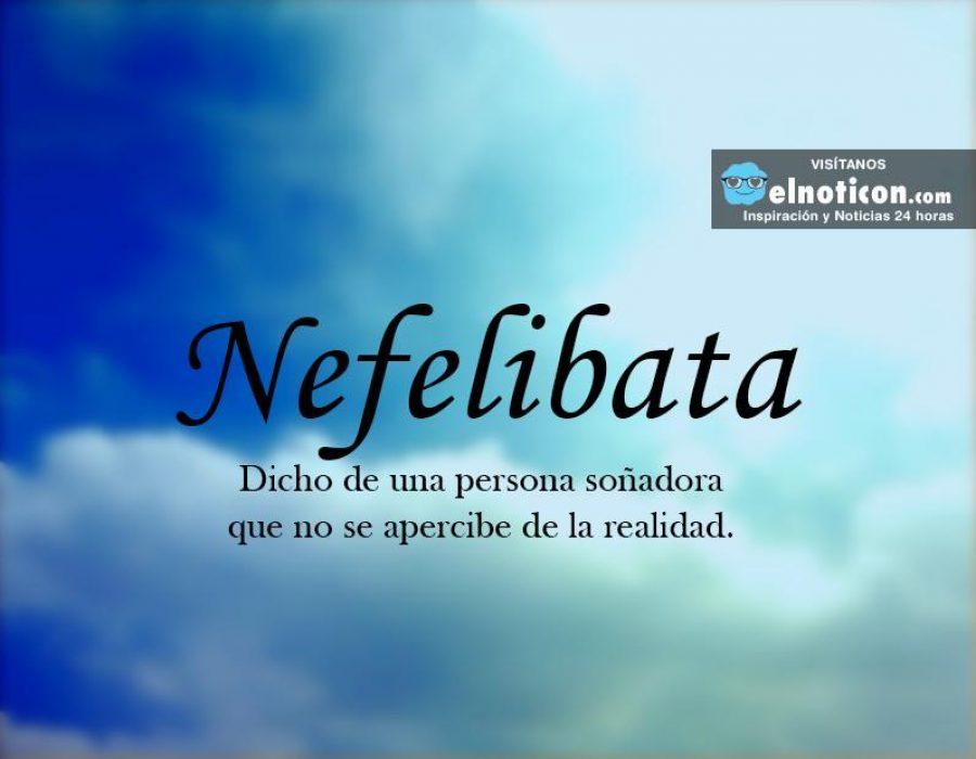 Definición de Nefelibata
