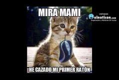 Mira mami…
