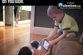 He told his dad he wanted to train his pup…