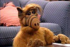 ¿Recuerdas a Alf? Te contamos 10 curiosidades de este peludo amigo