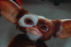 ¿Recuerdas A los Gremlins? Te contamos 30 curiosidades de estos inusuales peludos