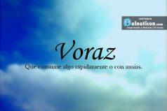 Definición de Voraz