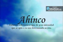 Definición de Ahínco