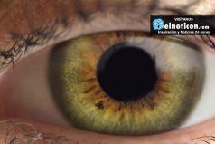 Hechos Geniales acerca de los ojos