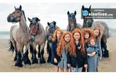 Fotos de Irlanda que demuestran que este país salió de un cuento de hadas