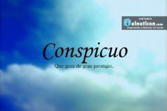 Definición de Conspicuo
