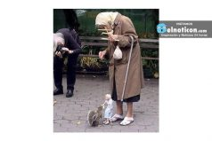 This woman uses a puppet to feed squirrels in the park