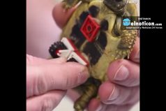 This Turtle Has a lego Wheelchair