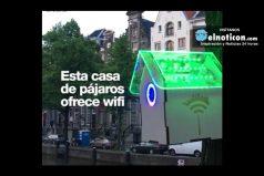 El wifi que 'nace' de la casa de los pájaros