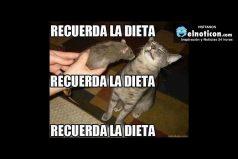 Recuerda la dieta