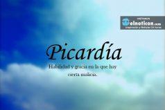 Definición de Picardía
