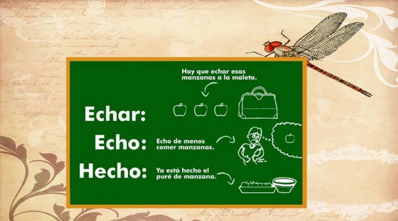 Diferencia entre Echar, Echo y Hecho