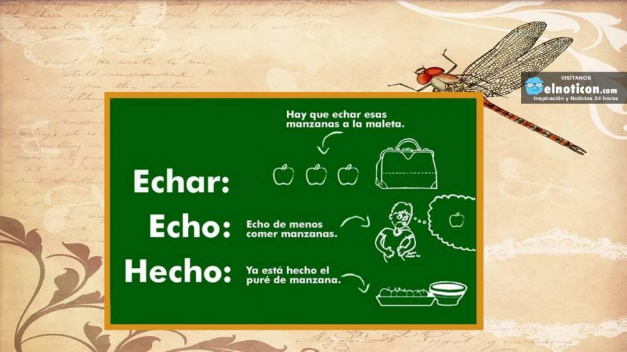 Clases de bachata barcelona