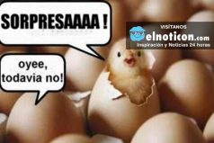 ¿Qué fue primero el huevo o la gallina? Conoce la respuesta a esta y otras preguntas locas que te has hecho