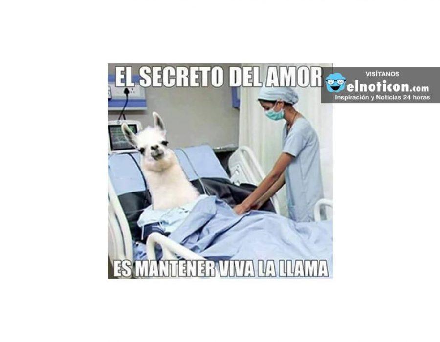 El secreto del amor…