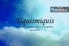Definición de Tiquismiquis