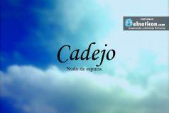 Definición de Cadejo