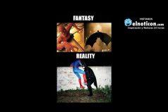 Fantasía vs Realidad