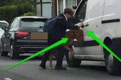 Este jovencito salvó la vida de un perro que colgaba por la ventana de un auto ¡ADMIRABLE!
