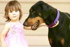 El perro tomó del pañal a la bebé y la lanzó por el patio. Entonces la mamá ve lo que nadie esperaba
