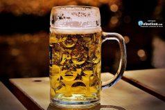 En beber cerveza podría estar la clave de la eterna juventud