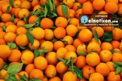 Mira cómo se hace industrialmente el zumo de naranja