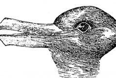 ¿Qué animal ves? Este test tiene 124 años y pone a prueba tu creatividad