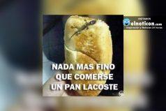 Nada más fino que comerse un pan Lacoste