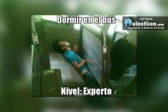 Dormir en el bus: Nivel experto