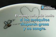 El mundo sería más bonito si los mosquitos chuparan grasa y no sangre