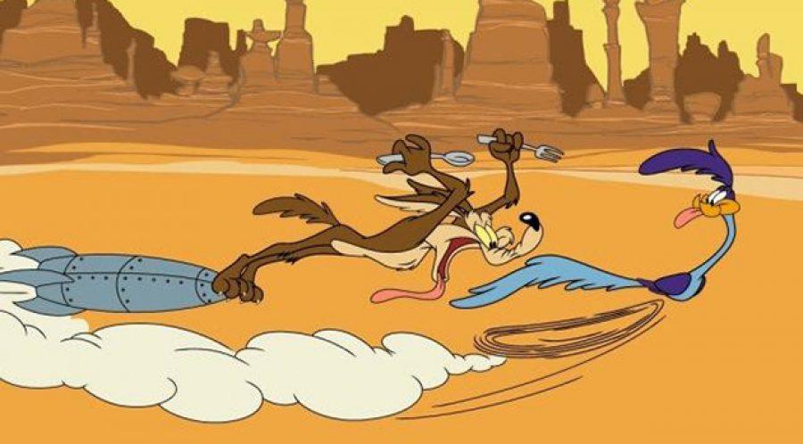 ¿Recuerdas al Correcaminos? 10 cosas que no sabías ¡Pobre Coyote jamás lo atrapó!